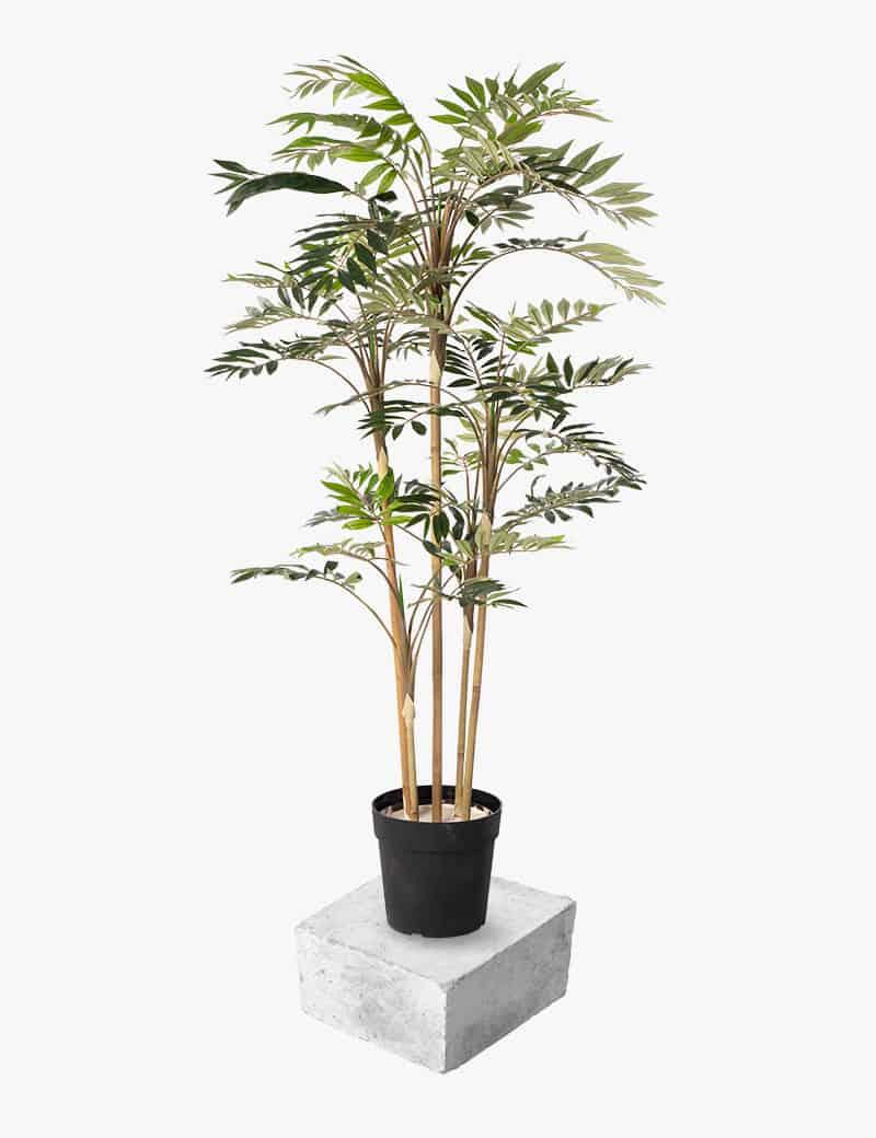 עץ דקל חמדוריאה מלאוכתי | Garden Market - צמחיה מלאכותית איכותית