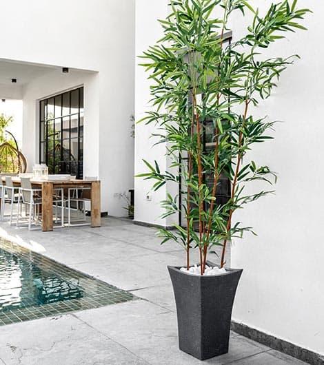 לשדרג את הבית באמצעות צמחיה מלאכותית | גרדן מרקט - צמחיה מלאכותית איכותית