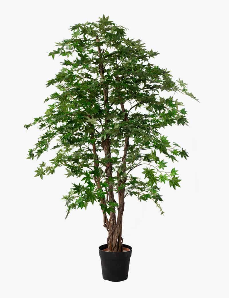 עץ מייפל ירוק מלאכותי | Garden Market - צמחיה מלאכותית