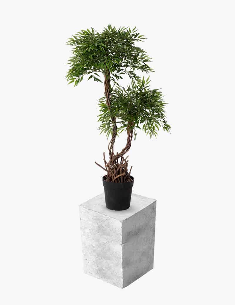צמח בונסאי 2 פיצולים מלאכותי | Garden Market - צמחיה מלאכותית איכותית