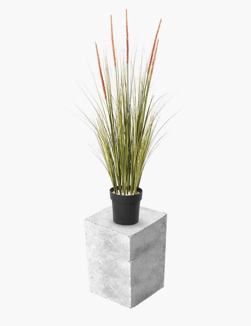 עשבוני פאמפס מלאוכתי | Garden Market - צמחיה מלאכותית איכותית