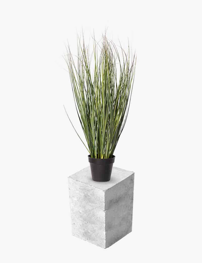 צמח עשבוני ארביס מלאכותי | Garden Market - צמחיה מלאכותית איכותית