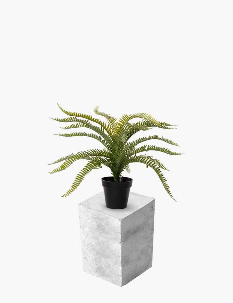 צמח שרך כליין מלאכותי | Garden Market - צמחיה מלאכותית איכותית