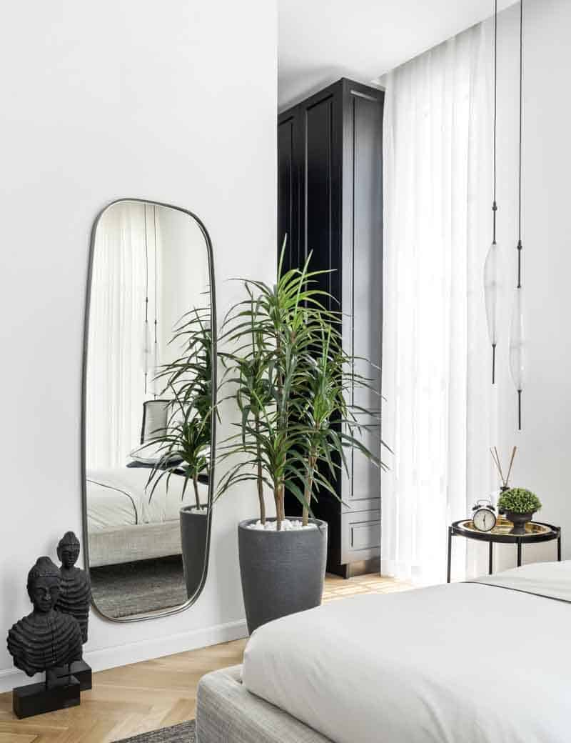 צמח דרצה 4 גזעים לעיצוב הבית | גרדן מרקט - צמחיה מלאכותית איכותית