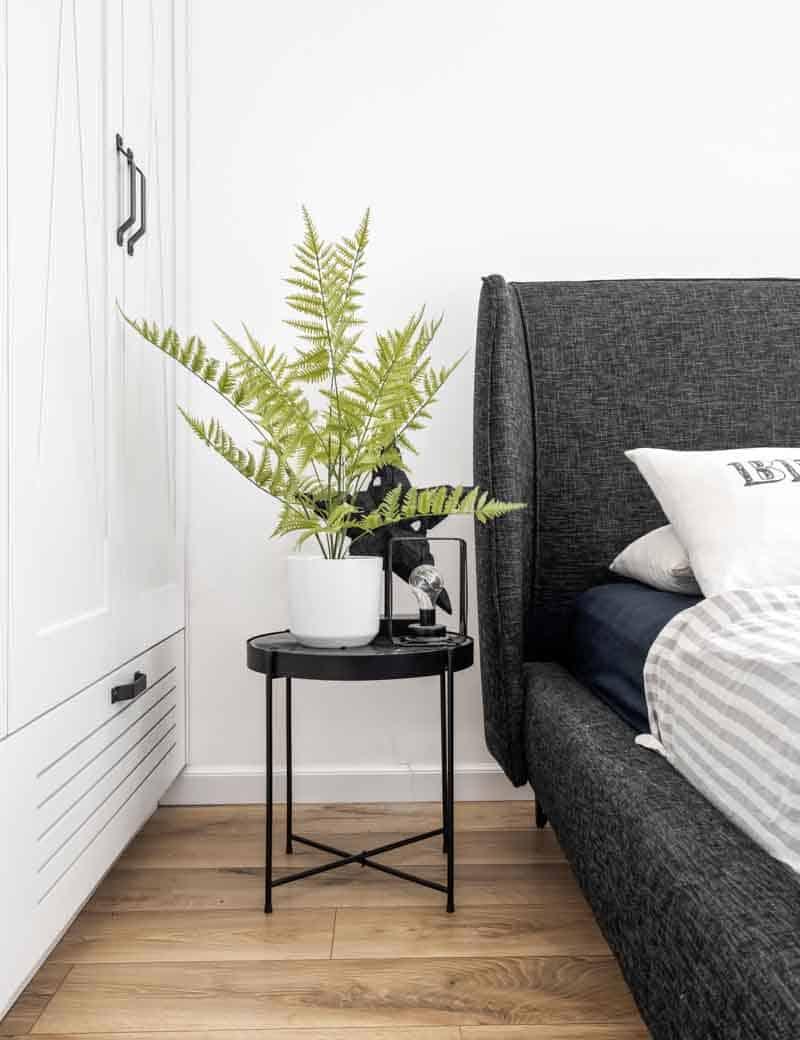 עציץ שרך דבליה לעיצוב הבית | גרדן מרקט - צמחיה מלאכותית איכותית