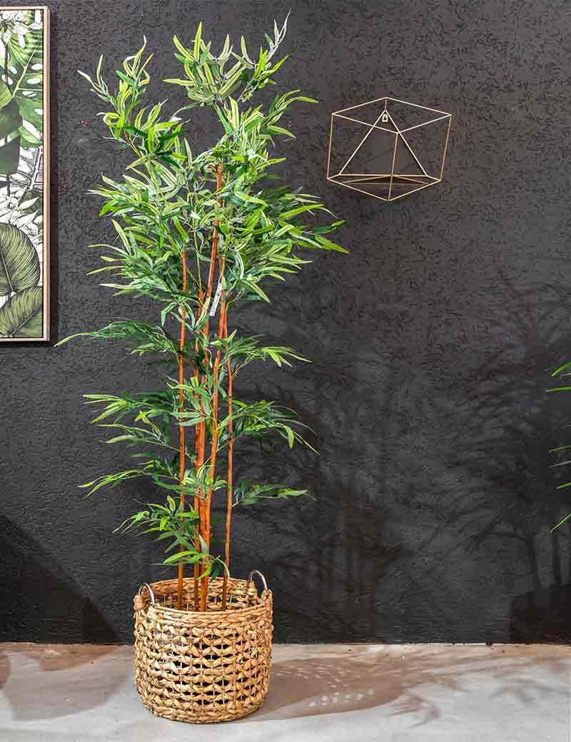 במבוק עמיד בשמש בסלסלת קש | גרדן מרקט - צמחיה מלאכותית איכותית